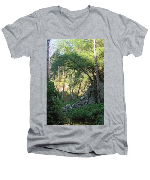 Summer On Bitten Path Men's V-Neck T-Shirt