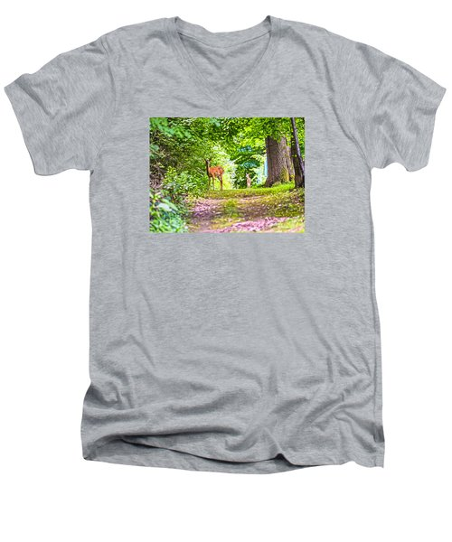 Men's V-Neck T-Shirt featuring the photograph Summer Stroll by Anthony Baatz