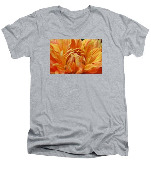 Men's V-Neck T-Shirt featuring the photograph Summer Tales by Michiale Schneider
