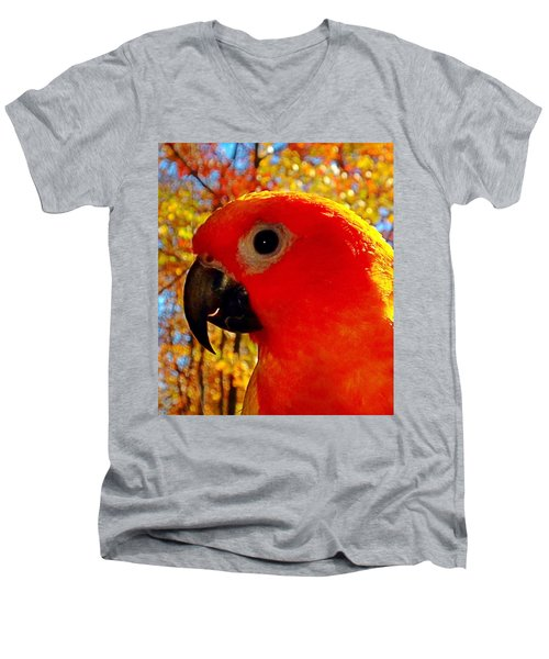 Sun Conure  Men's V-Neck T-Shirt