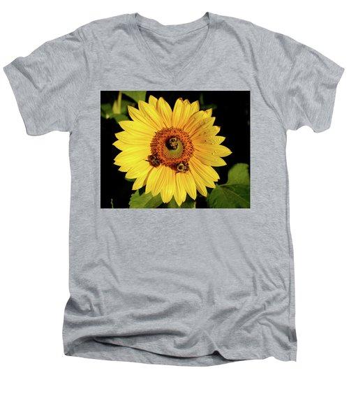 Sunflower And Bees Men's V-Neck T-Shirt by Nancy Landry