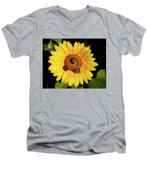 Sunflower And Bees Men's V-Neck T-Shirt