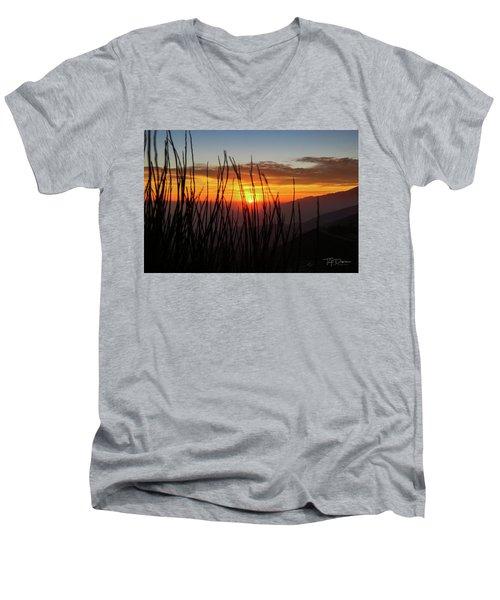Sun Through The Blades Men's V-Neck T-Shirt