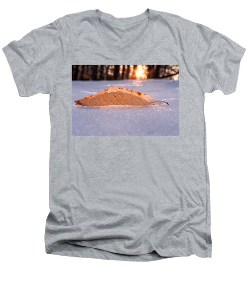 Sunbathing Men's V-Neck T-Shirt