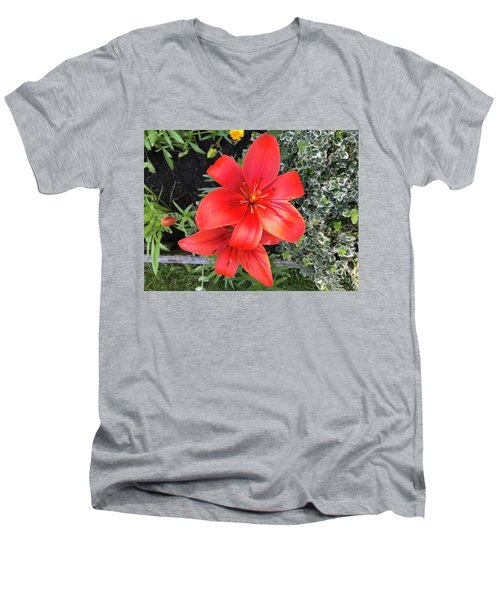 Sunbeam On Red Day Lily Men's V-Neck T-Shirt