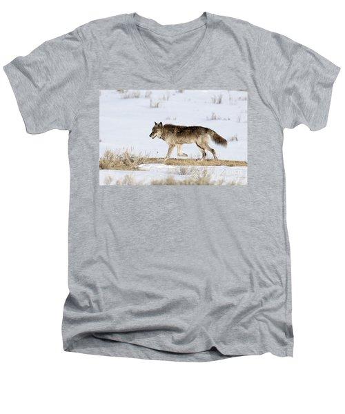 Sunday Stroll Men's V-Neck T-Shirt