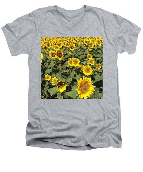 Men's V-Neck T-Shirt featuring the photograph Sunflower 2016 by Caroline Stella