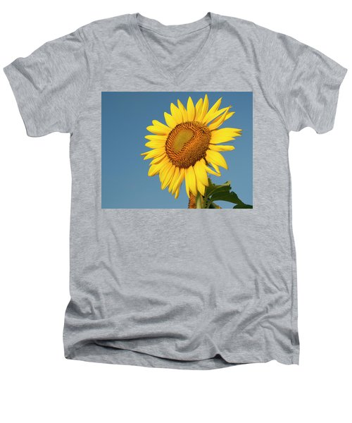Sunflower And Blue Sky Men's V-Neck T-Shirt by Phyllis Peterson