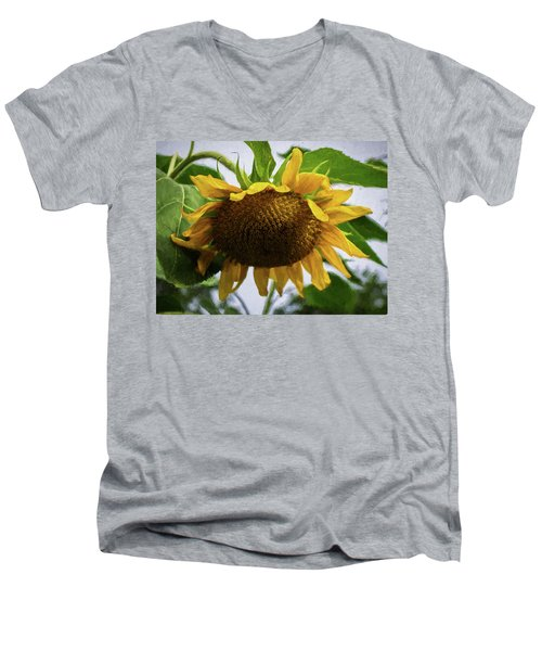 Sunflower Art II Men's V-Neck T-Shirt