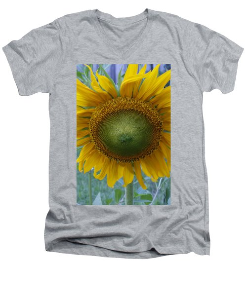 Sunflower Men's V-Neck T-Shirt by Catherine Alfidi