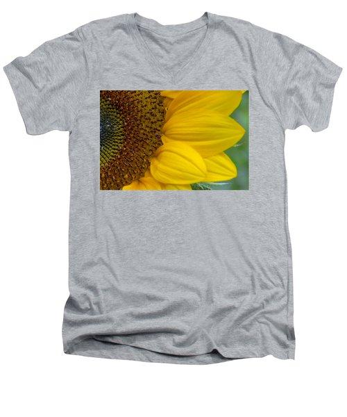 Sunflower Closeup Men's V-Neck T-Shirt
