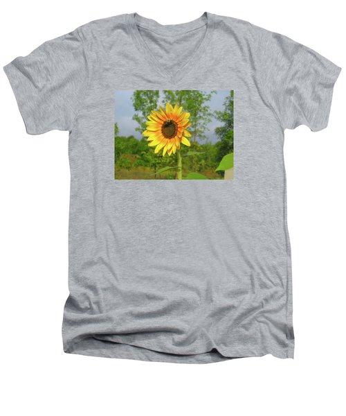 Ah, Sunflower Men's V-Neck T-Shirt by Deborah Dendler