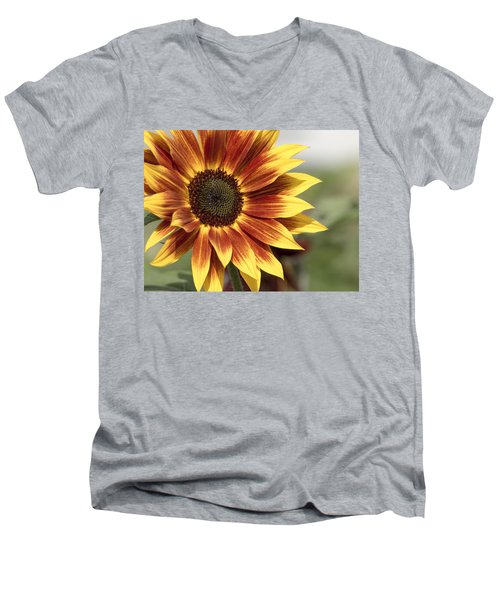 Sunflower Men's V-Neck T-Shirt