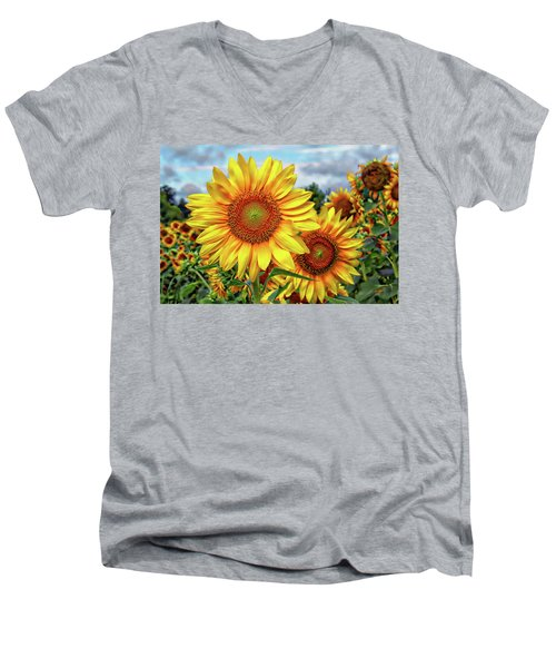 Sunflower Field Men's V-Neck T-Shirt