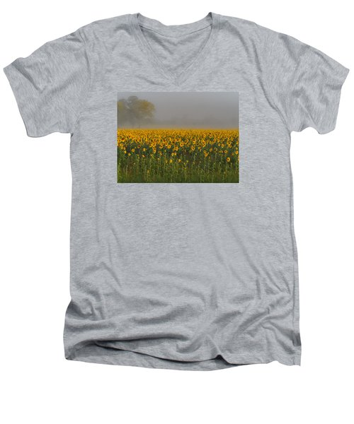 Sunflower Field On A Foggy Morn Men's V-Neck T-Shirt