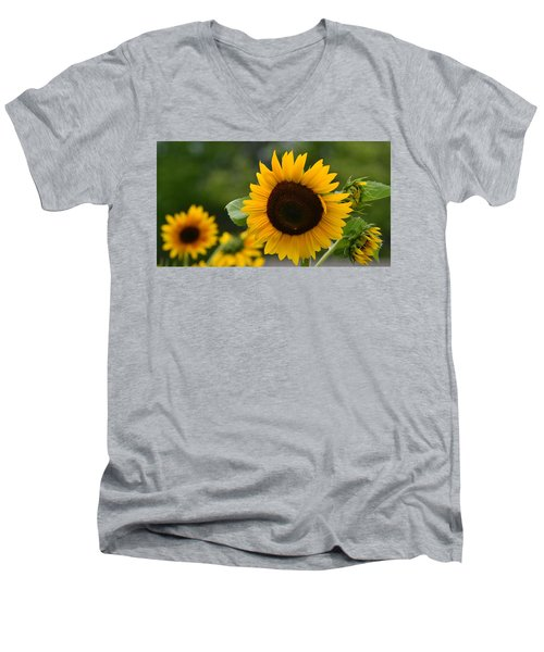 Sunflower Group Men's V-Neck T-Shirt