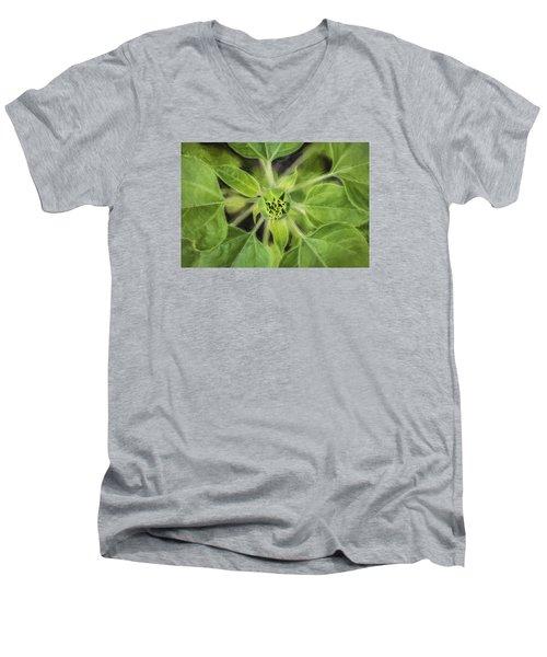 Sunflower Helianthus Giganteus Painted Men's V-Neck T-Shirt by Rich Franco