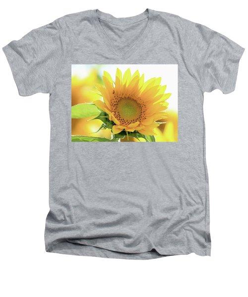 Sunflower In Golden Glow Men's V-Neck T-Shirt
