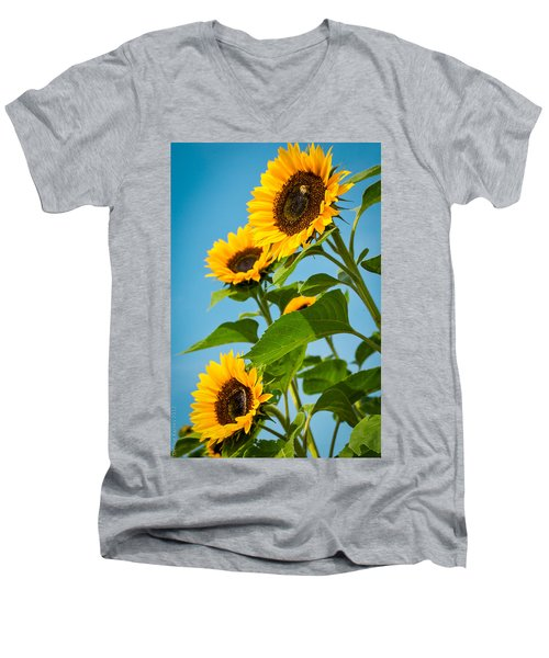 Sunflower Morning Men's V-Neck T-Shirt by Debbie Karnes