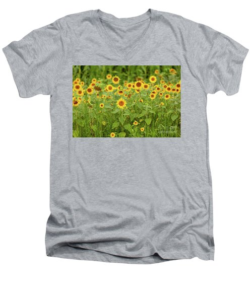 Sunflower Patch Men's V-Neck T-Shirt
