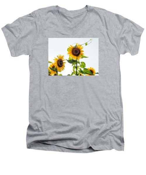 Sunflower With Vine Men's V-Neck T-Shirt