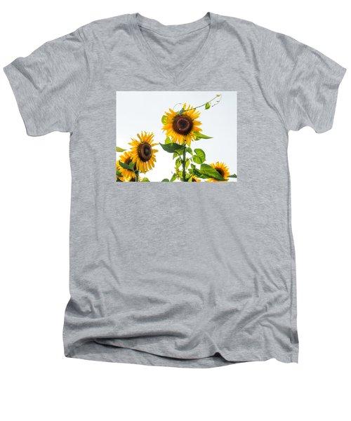 Sunflower With Vine Men's V-Neck T-Shirt