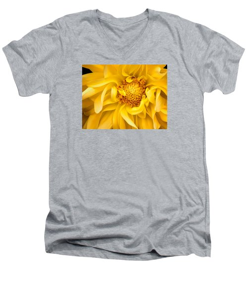 Sunflower Yellow Men's V-Neck T-Shirt