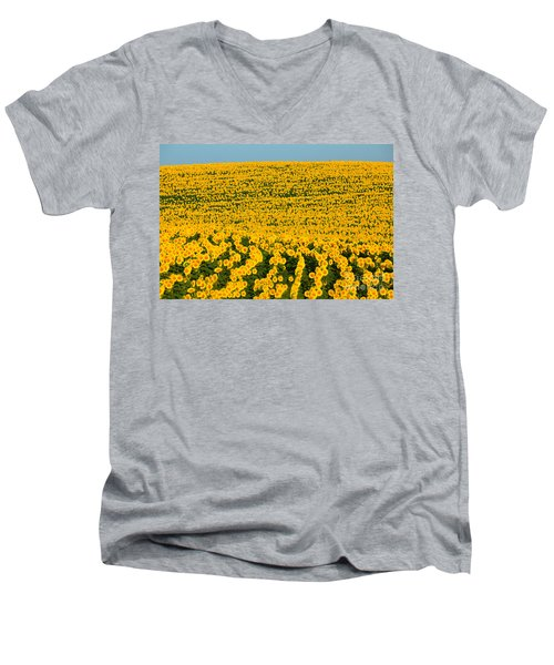 Sunflowers Galore Men's V-Neck T-Shirt by Catherine Sherman
