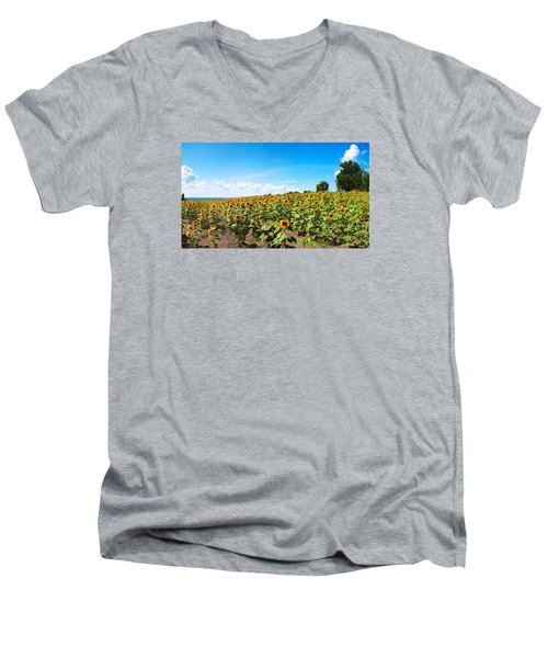 Men's V-Neck T-Shirt featuring the photograph Sunflowers In Ithaca New York by Paul Ge