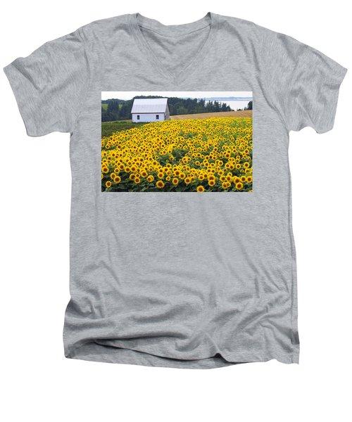 sunflowers in PEI Men's V-Neck T-Shirt