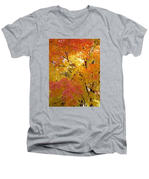 Men's V-Neck T-Shirt featuring the photograph Sunkissed 2 by Elizabeth Sullivan