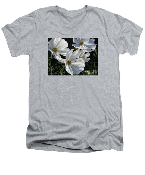 Sunlight And White Cosmos Men's V-Neck T-Shirt