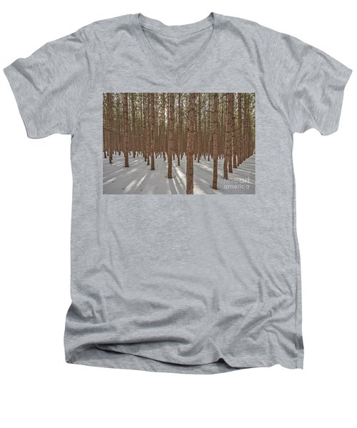 Sunlight Filtering Through A Pine Forest Men's V-Neck T-Shirt