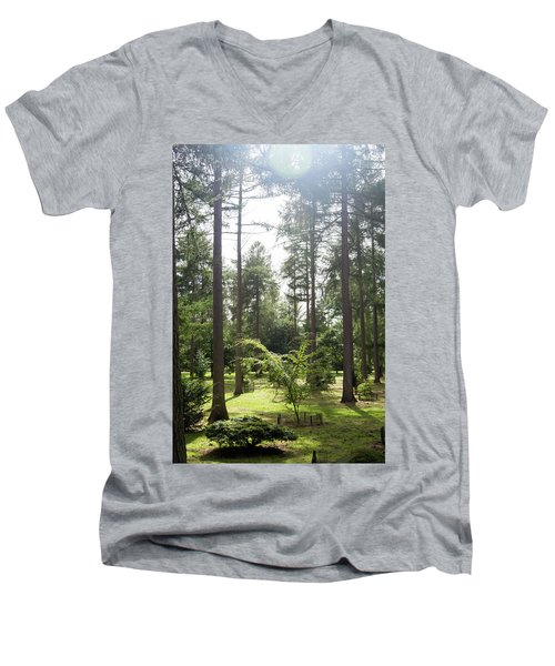 Sunlight Through The Trees Men's V-Neck T-Shirt
