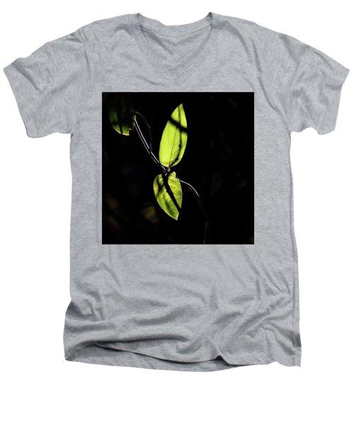 Sunlit Leaves Men's V-Neck T-Shirt by Jay Stockhaus