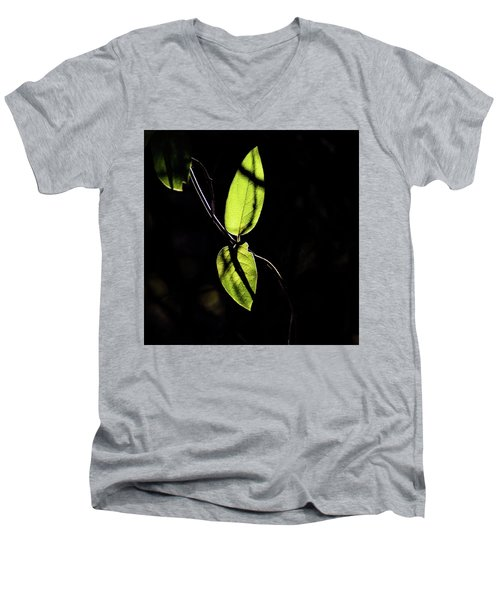 Sunlit Leaves Men's V-Neck T-Shirt
