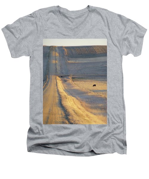 Sunlit Road Men's V-Neck T-Shirt