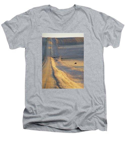 Sunlit Road Men's V-Neck T-Shirt