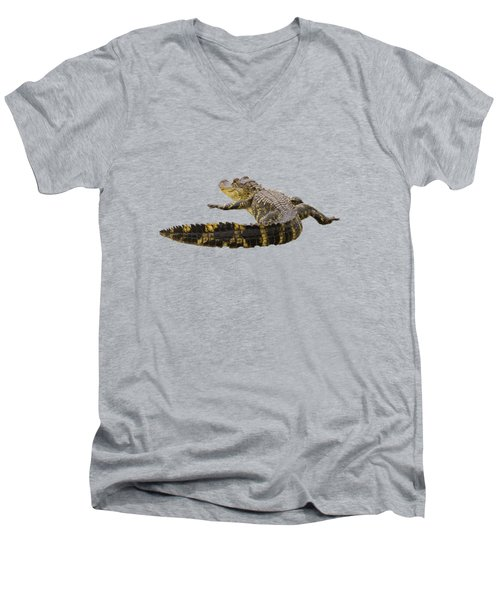 Sunning On The Shore Men's V-Neck T-Shirt by Zina Stromberg