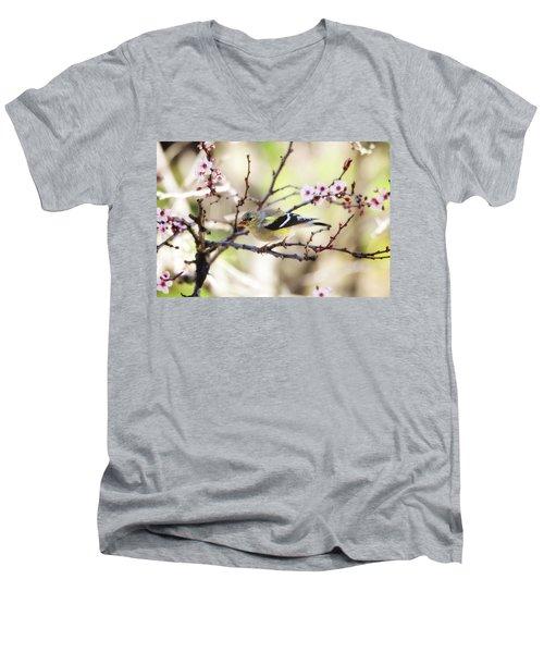 Sunny Days Men's V-Neck T-Shirt