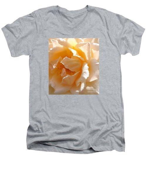Sunny Delight Men's V-Neck T-Shirt by Fred Wilson