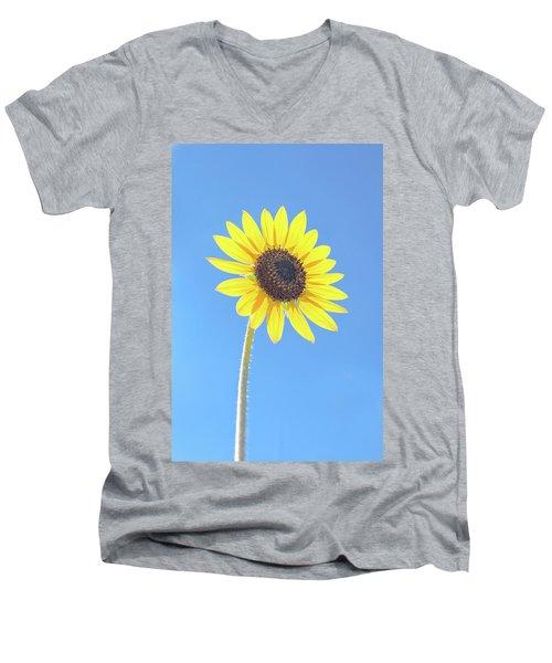 Sunny Delight Men's V-Neck T-Shirt