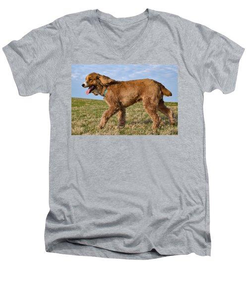 Sunny Stroll Men's V-Neck T-Shirt