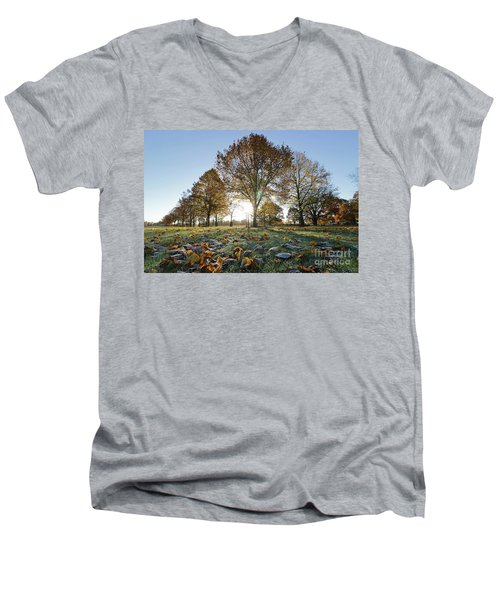 Sunrise Through Lime Trees Men's V-Neck T-Shirt