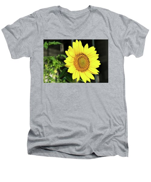 Sun's Up Men's V-Neck T-Shirt by Ed Waldrop