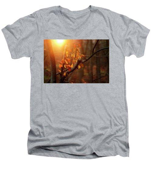 Sunset #8 Men's V-Neck T-Shirt
