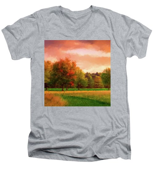 Sunset Field Men's V-Neck T-Shirt