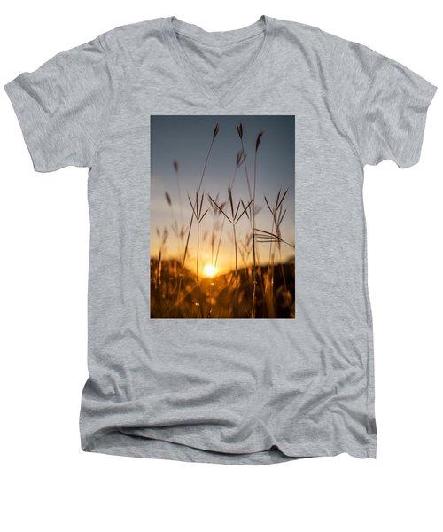Sunset Grass Men's V-Neck T-Shirt
