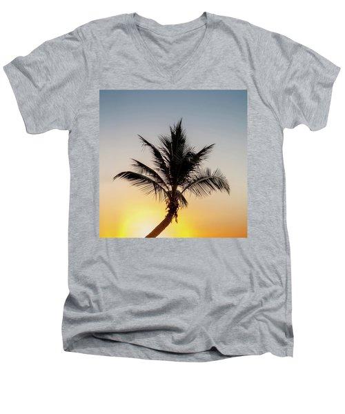 Sunset Palm Men's V-Neck T-Shirt by Az Jackson