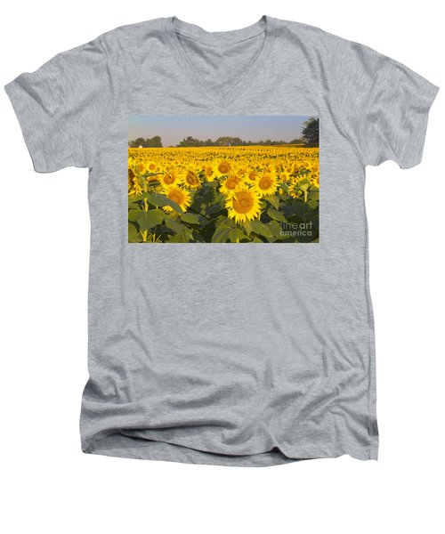 Sunshine Flower Field Men's V-Neck T-Shirt